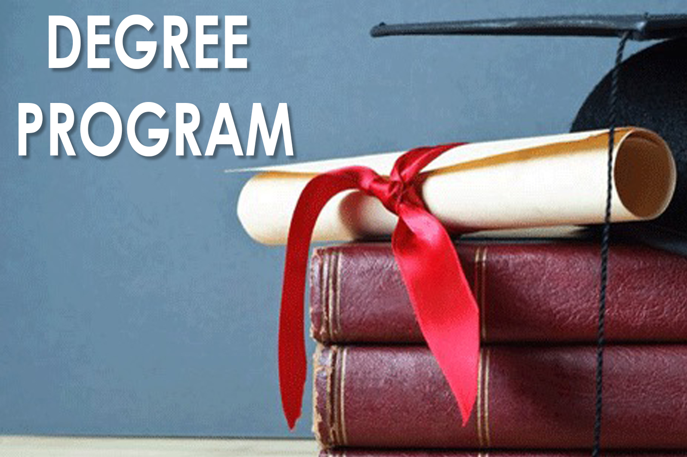 Learn More About The Degree Program